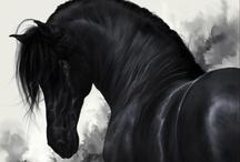 Horses and etc. / by El jardín de Noah de Rocío P.