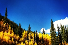 Guanella Pass, Georgetown Colorado / by Chase Smith