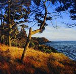 The ARt of the Landscape Paintings / From the artists represented by WaterWorks Gallery, Friday Harbor, WA including Jennifer Williams, David Ridgway, Amanda Richardson, Tim Schumm, Art Hansen, Catherine Eaton Skinner and Debbie Daniels