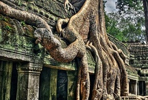 Ancient Wisdom from Ancient places  /  The secrets of mankind lay hidden in ancient places