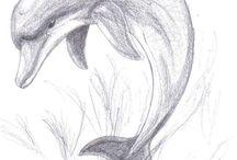 Delfinek rajzok