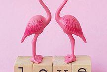 Dietske Klepper Flamingo Welt