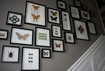 Wall Gallery / by Erin Felten