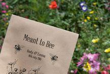 Il matrimonio botanico/ Bothanic wedding