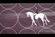 Matamata Horse Trial