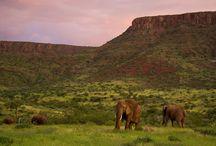 Namibia travel inspiration