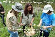 Moonwise Herbs, LLC / events