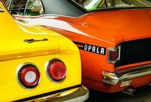 Opala's Beta Faz Repin
