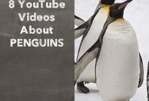 penguins inquiry