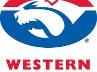 Western Bulldogs / Western Bulldogs  AFL Merchandise