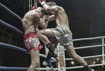 Box&MMA world
