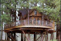 dom v korunach stromov