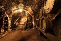 Bodega/Chateau/Winery
