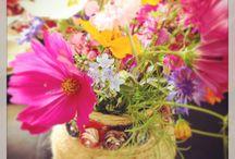 B's flowers