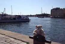 Teddy on tour / Our lovely Charity-Teddy is traveling around the world! Maybe you have met him on his journey? Share your pictures with us how you cuddle the sweet teddy bear! #dergutebaer