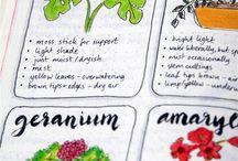 dziennik roślin