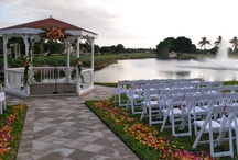 Orange & Fuchsia Happy Combination! / 11.13.10 Wedding Ceremony & Reception - Doral Park Country Club