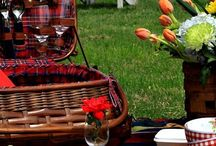 ***Let's go on a picnic!***