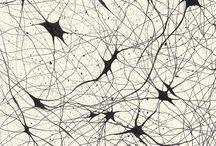 sinapse - redes