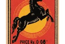 Horse / by Elizabeth Miller