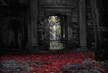 Darkness / Gothic, Vampires, Paranormal...
