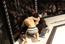 Kickboxing / Your Last News in Kickboxing