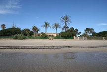| Beach Retreats |