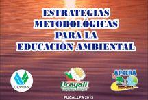 Educación / Ambiental