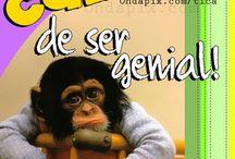 frases para pensar   / a pensar / by Liliana Peraita