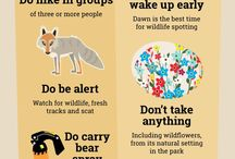 Guide per i parchi
