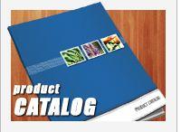 Catalogs ~ Work / by Diane Cappuccio