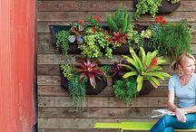 Garden Stuff / by Gayle Keith