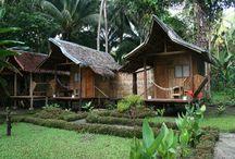 bambu evler