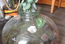 Grand terrarium et petit photophore