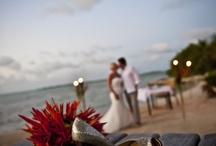 Weddings: Destination & Beach Theme / Wedding Destination or Beach theme ideas:  Belize Fiji Mexico Cabo Beach  #alenaswanson #weddingplanner #weddingindustryexpert