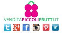 SOCIAL NETWORK VENDITAPICCOLIFRUTTI.IT / Seguici su tutti i nostri Social Network