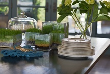 Decorating With Wheatgrass / Our Seattle area container rentals are beautifully grown with wheatgrass, pea shoots or sunflower greens