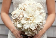 Bridal Bouquets - Mostly White / by Jeanie Gregorich