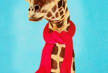 girafas <3