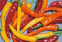 Chilli Peppers / Red chillies are very high in vitamins A and C. The compound capsaicin that gives chillies their burn is also thought to have a positive effect on blood cholesterol