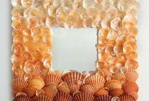 deniz kabuğu
