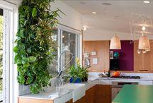 zieleń w mieszkaniu/ green apartments / aranżacje zielenią wnętrz, zielone ściany