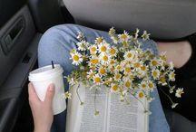 Reading ♋