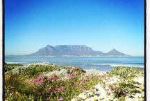 Cape Town / Landscape