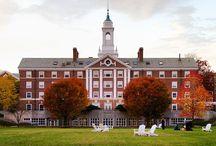 Harvard University / University