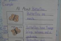 Kindergarten informative text