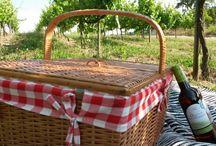 Picnics in The Vineyards in Portugal