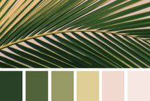 Color Palette Inspiration / Various color scheme palettes ParMar Media can use as inspiration when creating a new map or revamping a vintage map. Par-Mar.net