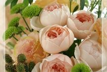 【出産祝のお花】生花ギフト / Flower noteの生花アレンジ。 出産祝いのアレンジギャラリーです