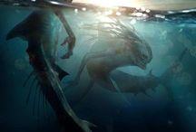 Sea dwellers